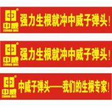 郑州条幅绶带