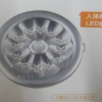 应急灯 人体感应LED嵌顶灯 照明灯 吸顶灯价格 吸顶灯厂家