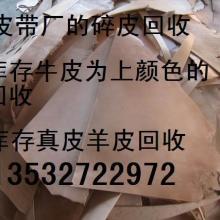 供应大量回收废牛皮羊皮下角料,库存真皮牛皮回收价格,生皮勿来