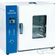 101-4A电热恒温鼓风干燥箱图片