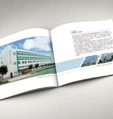 画册设计图片/画册设计样板图 (4)