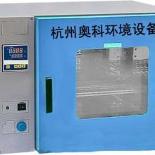 供应工业专用鼓风干燥箱