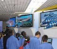 供应安徽3D立体显示、立体显示系统、立体成像