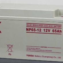 哈密汤浅蓄电池授权经销官方网站12V100AH图片