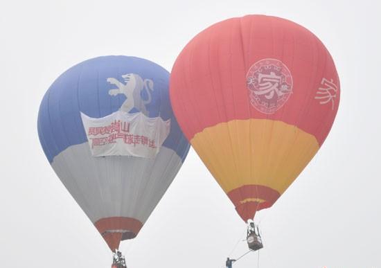 供应热气球价格图片