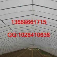 供应弧形温室
