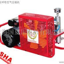 供应GS品牌压缩空气充气泵/最好的高压充气泵批发