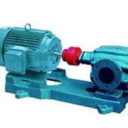 泊头2CG高温齿轮泵图片