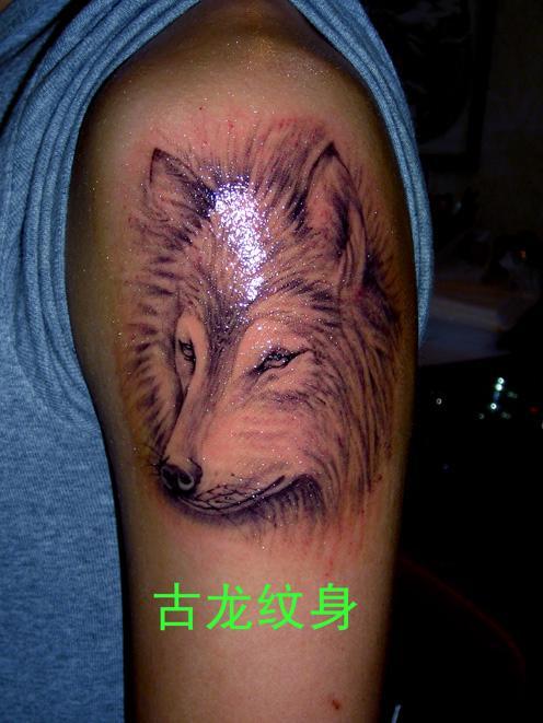 哈尔免费纹身店图片图片
