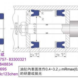 液压油缸鼎基DZUN密封件6图片