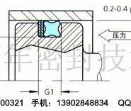 单联泵油封星型圈密封件图片