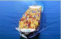 海运进出口服务