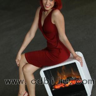 汀普莱斯电壁炉火立方壁炉电暖器图片