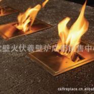 现货供应及个性定制高热值真火壁炉图片