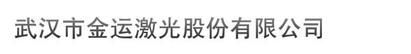 武汉市金运激光股份有限公司