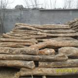 枣木板材,山东杏木,黄杨木方块料,山东梨木价格魏氏木业公司
