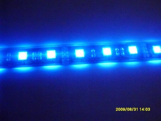 供应5050软灯条一米30灯蓝光5050贴片灯珠深圳贴片厂家