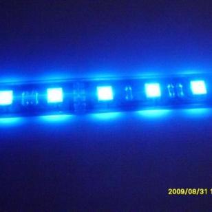 5050软灯条一米30图片