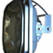 SBD1130系列免维护节能防爆泛光灯图片