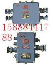供应矿用隔爆型通讯电缆分线箱50对图片