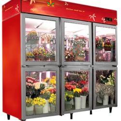 供應鮮花櫃鮮花保鮮展示櫃天津保鮮櫃