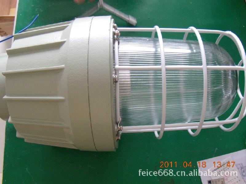 ...白炽灯图片简述:CCD-250400系列隔离防爆型防爆灯(IIC) ...