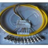 12芯FC/SC/ST单模束状尾纤图片