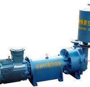 2BEC大型真空泵2BEA图片