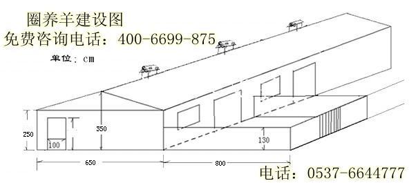 北京 山东/生产厂家:山东富康畜牧养殖总场