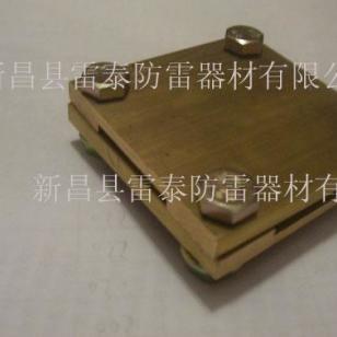 接地棒铜夹子图片
