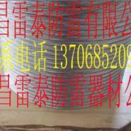 广东接地镀锡铜绞线图片