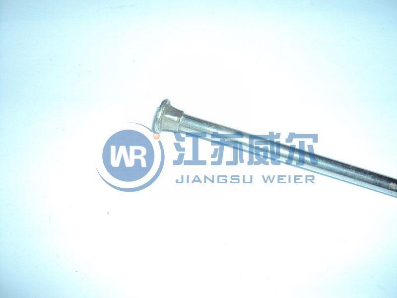 供应201不锈钢M68马车螺栓 马车螺丝螺栓 半圆头方劲螺栓