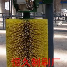 供应创新毛刷辊 异形毛刷 工业抛光毛刷辊