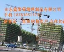 阻燃式建筑安全立网