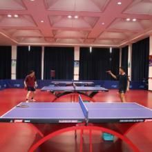 供应体育运动地板 乒乓球运动地胶 地板胶