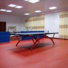 供应塑胶地板价格 运动地材 乒乓球运动地胶