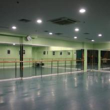 供应羽毛球地板2011年塑胶地板价格