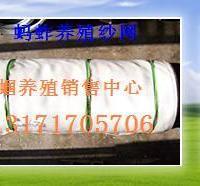 供应蝗虫卵蚂蚱卵提供养殖技术回收成品 图片|效果图