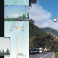 供应8米双臂灯,帝豪照明长期供应双臂路灯,8米双臂路灯,9米