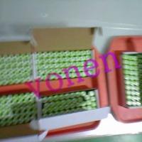 供应123A700MAH锂电池价格