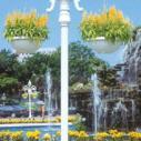 庭院灯图片