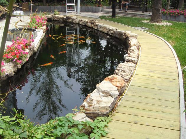 主营:             鱼池设计,庭院鱼池图片
