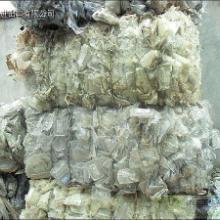 供应废塑料再生造粒机