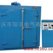 安徽安庆瑞丰电气热风循环干燥箱图片