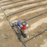 供应使用滴灌带技术要点要求