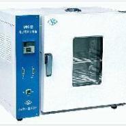 电热鼓风干燥箱101-1图片