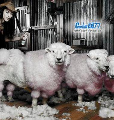 电动剪羊毛机图片/电动剪羊毛机样板图 (2)