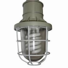 供应防爆紧凑型节能灯BAD51-J厂家直销