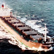 高岭土进口散货船运输代理/大宗货物进出口散货船运输批发