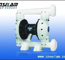 供应SLQK新型气动隔膜泵图片